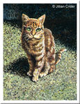 Original miniature art acrylic painting Old Station Cat